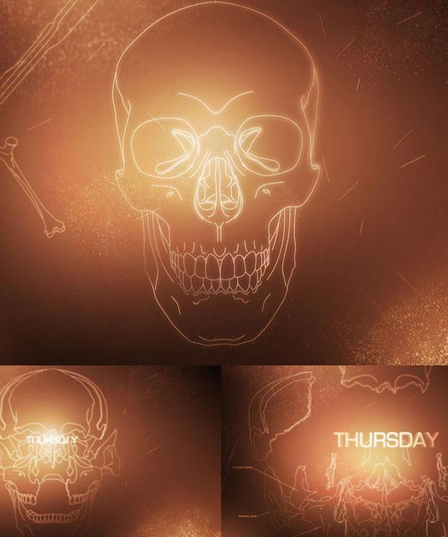 Fox-Bones 01
