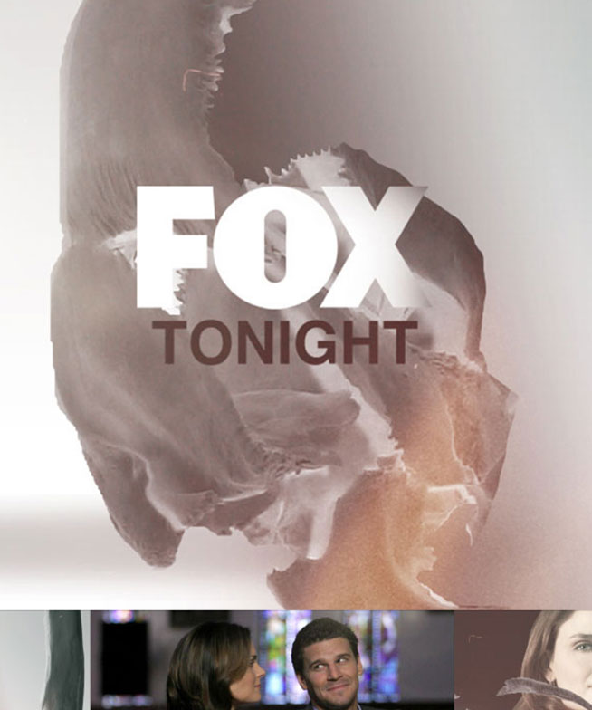 Fox-Bones 04