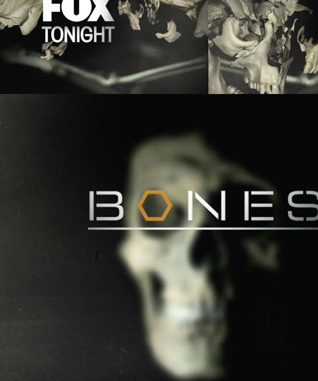 Fox-Bones 05