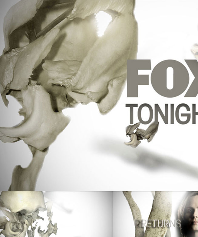 Fox-Bones 07